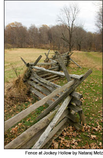 Fence at Jockey Hollow