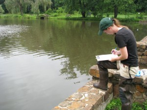 Kelly Martin completing a data sheet at Bayne Park pond.