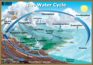 The Water Cycle. Credit: U.S. Dept. of the Interior. U.S. Geological Survey. John Evans, Howard Perlman, USGS.