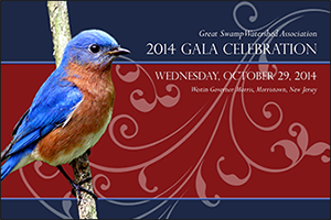 The invitation for GSWA's 2014 Gala Celebration features the image of an eastern bluebird (Sialis sialis) photographed by Mendham Township resident Ari Kaufman.