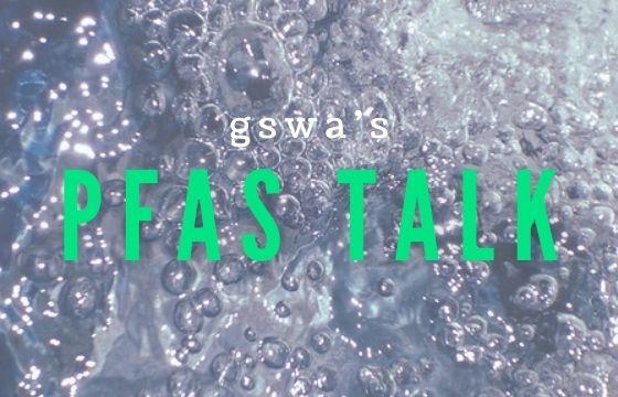 GSWA Briefing - FSAS Talk